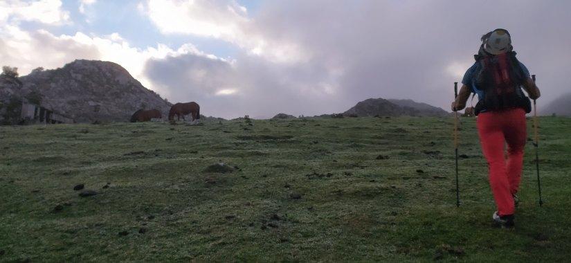 Cresta de los Argaos