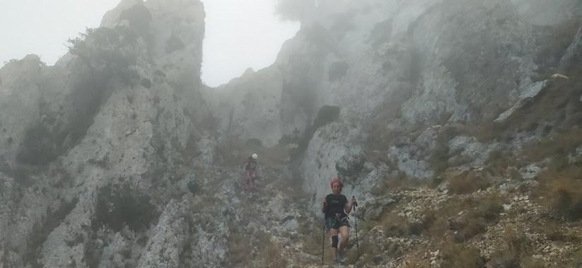 Ruta con niebla