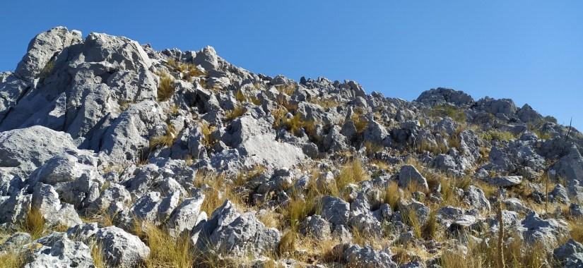 Roca Caliza