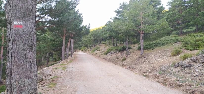 Ruta Circular desde las Dehesas de Cercedilla