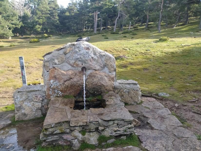 Fuente del Cerbunal