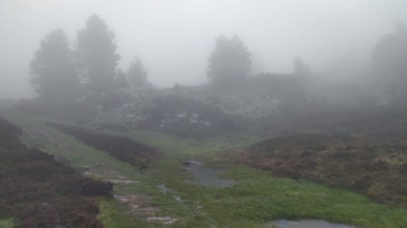 Niebla en Urbión