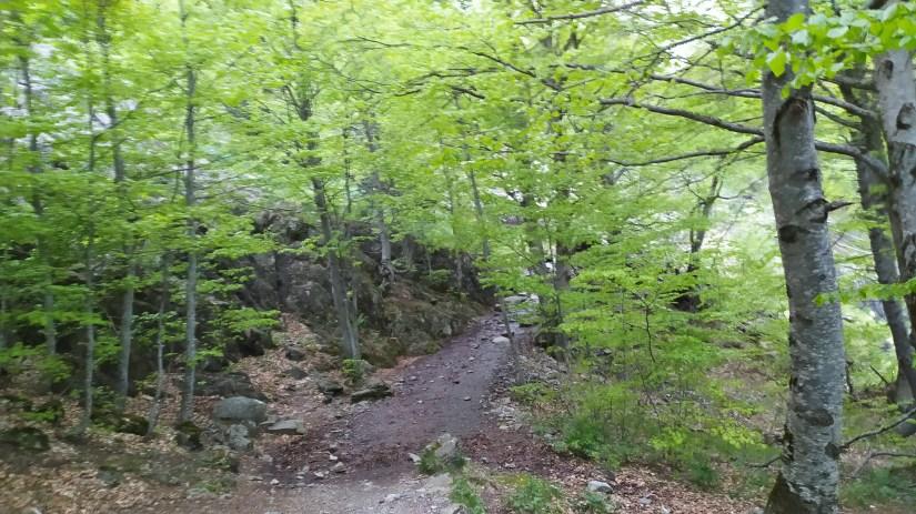 Ruta al Respomuso desde la Sarra