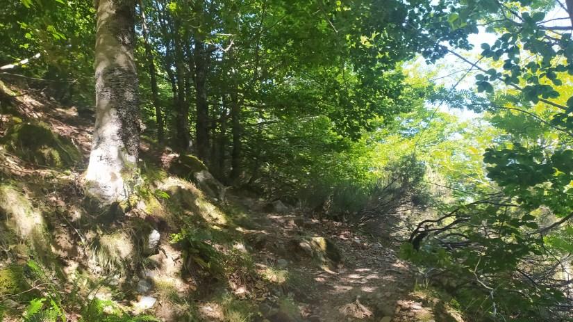 Subir al Pico San Millán