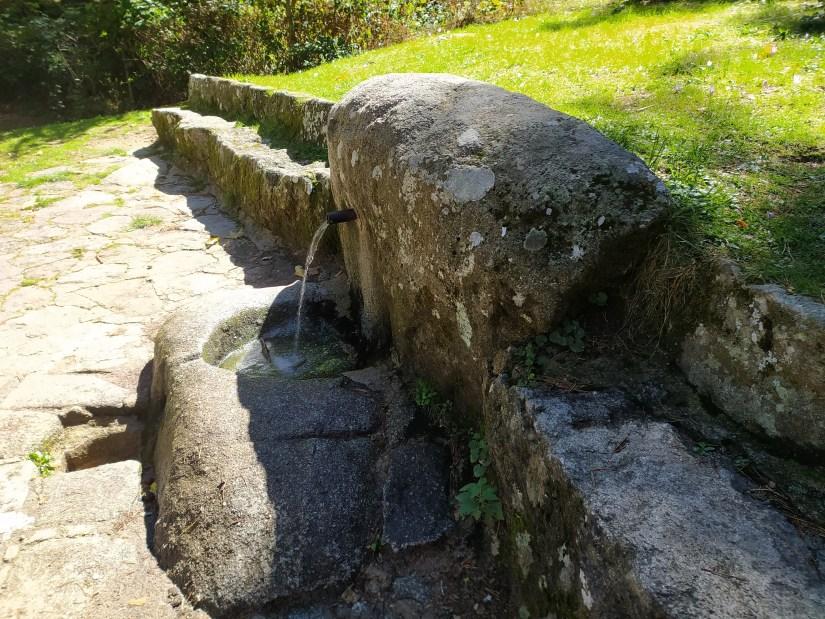 Fuente de la Yedra