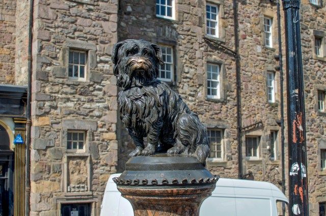 Statue of a black fluffy dog, with his nose rubbed to a bronze color