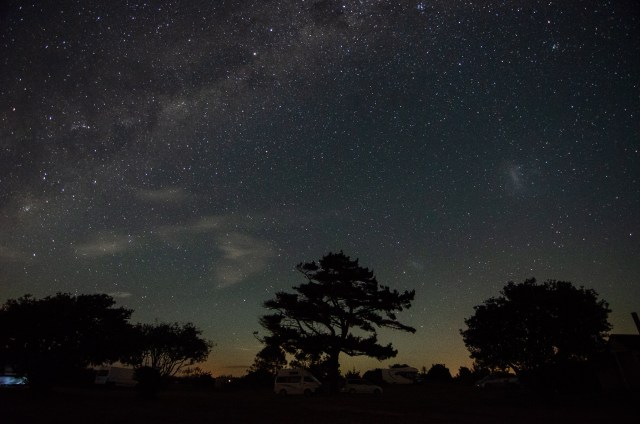 Night sky full of stars, with tall trees and camper vans