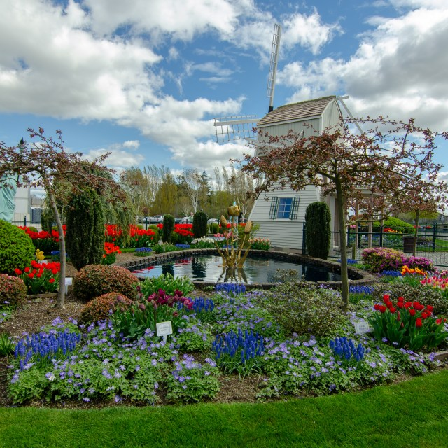 Flower garden surrounding replica windmill and pond, beneath a blue & clouded sky