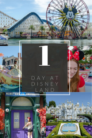 Photos of Disney roller coaster, Tiana in a parade, Smiling woman on teacups, Monsters University door and Its A Small Word, during 1 day in Disneyland