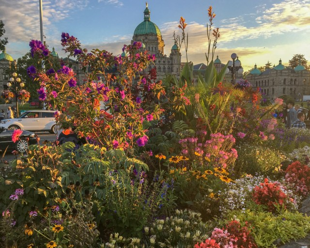 Colorful flowers covering beige Parliament buildings that have a green top