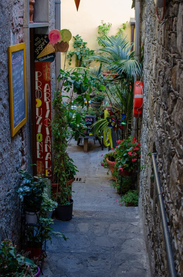 Looking down a small alleyway filled with plants and signs for stores. Planning to work through small streets can be your best travel planning resource!