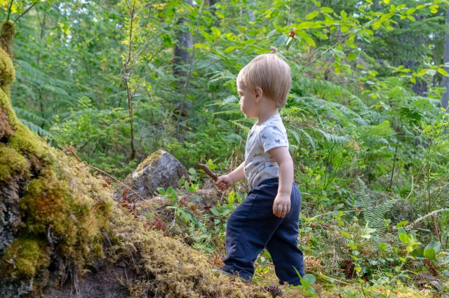 Toddler hiking on a green, wooded trail