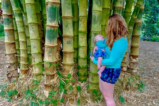 Woman holding baby, in beach clothes, beside bamboo trees on a hike
