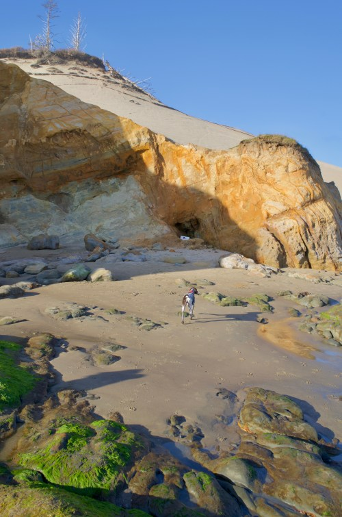 The sun shining on orange cliffs on a beach, with high sand dunes directly behind them and a dog walking around in front of them