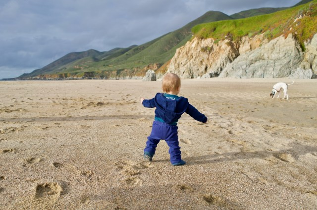 Small baby in blue facing away from the camera, with arms out trying to balance while walking down a beach. In the background are greenery filled cliffs and a white and gray dog!