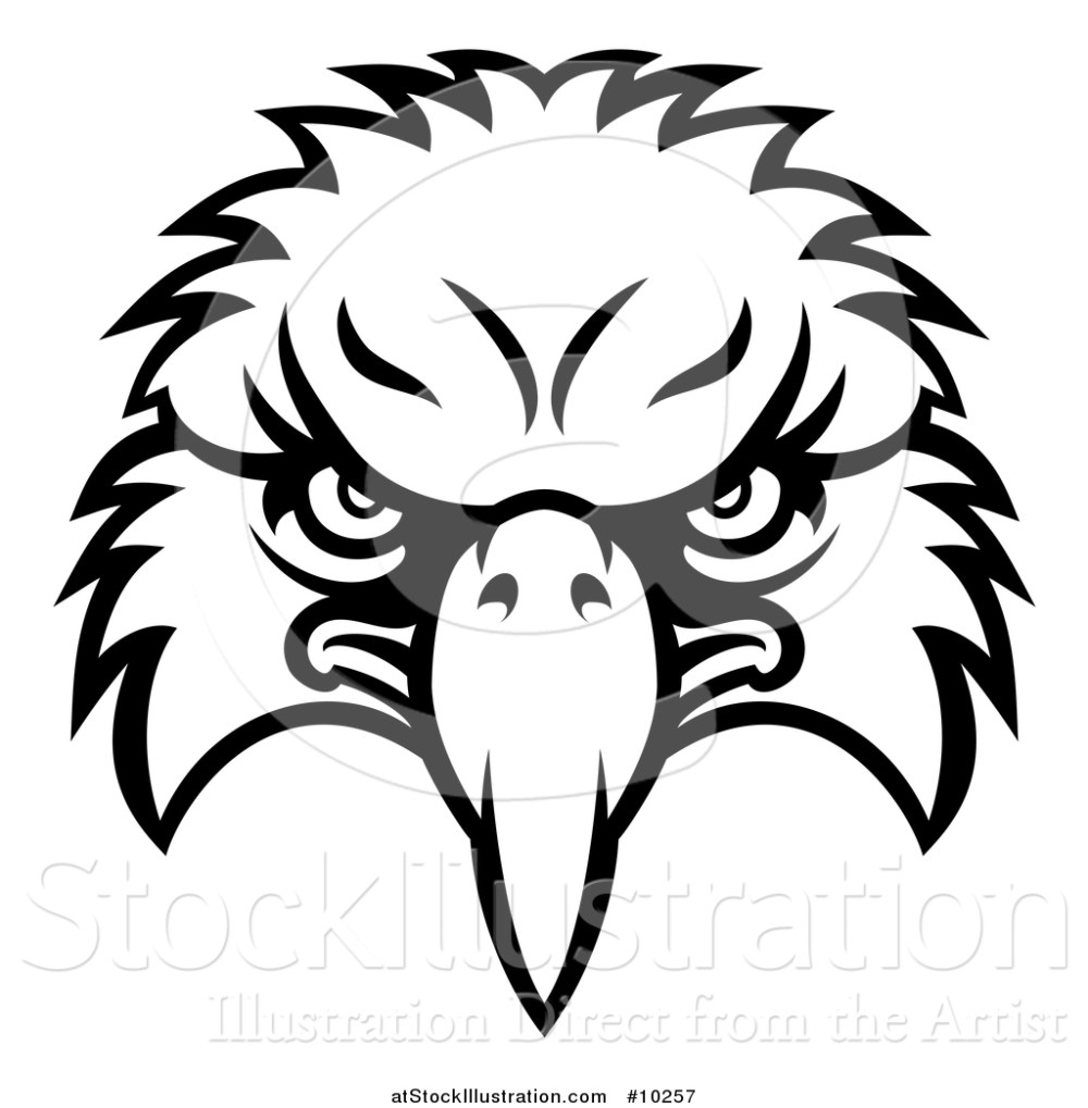 medium resolution of vector illustration of a black and white bald eagle mascot face