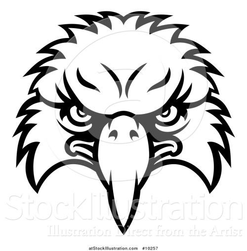 small resolution of vector illustration of a black and white bald eagle mascot face