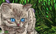 gato-2-frame-002