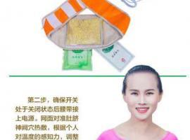 【圖】最健康的減肥----養森瘦瘦包(原名艾米粒瘦瘦包) - 法國全法美容護膚區 - 華人街分類廣告