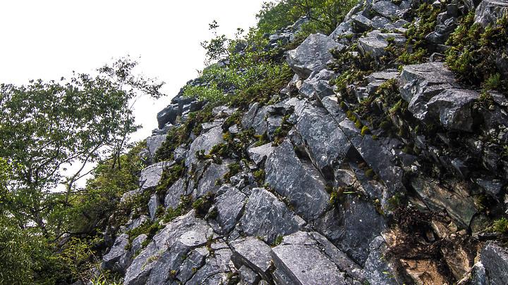 別給我像是天堂的懸崖—花蓮錐麓古道 - Mobile01