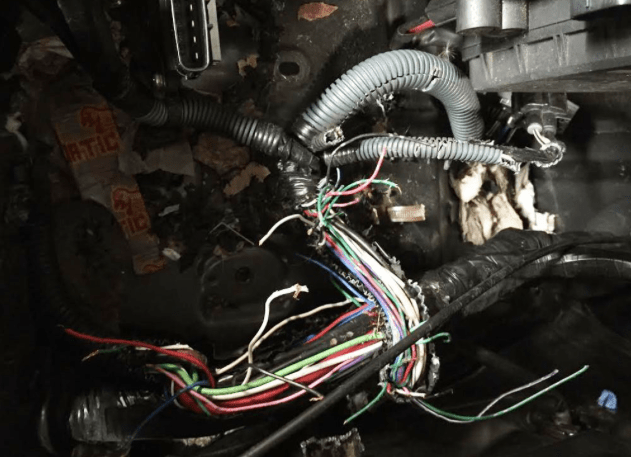 Ford Fusion Hybrid Fuse Box Rodents Eating Cabin Filter Priuschat
