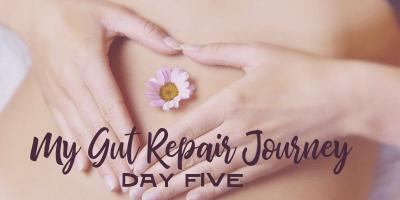 My Gut Repair Journey – Day 5