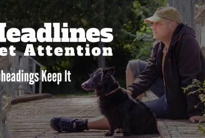 Engaging headlines and subheadings