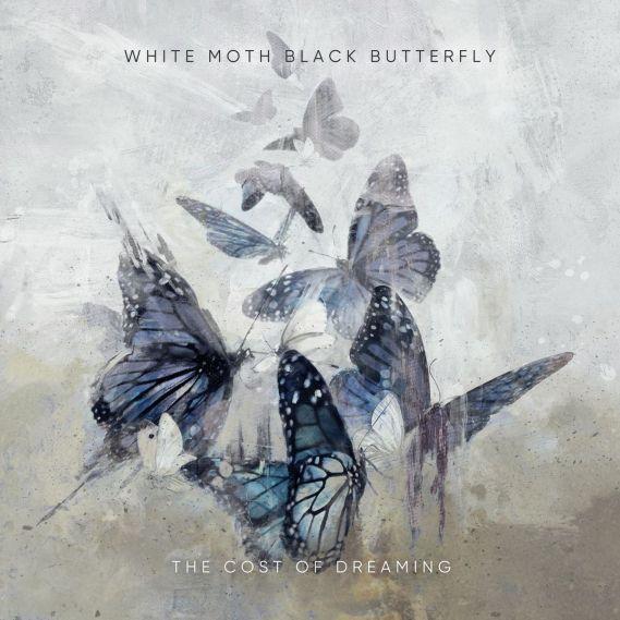 white moth black butterfly