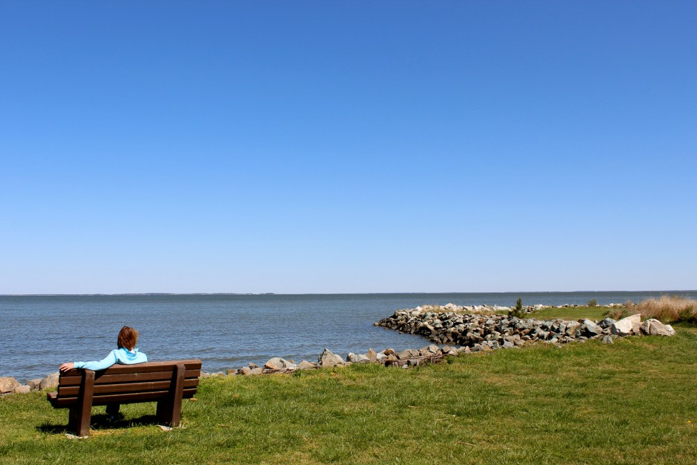 Scenes from a Saturday: Bayside (4/6)
