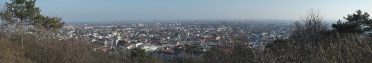 Baden from nearby hill