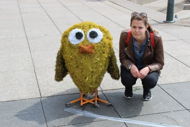 Chick and one Finnish angry bird