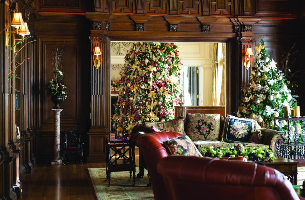 GLANWORTH GARDENS: The Christmas tree in the Great Hall can be enjoyed from the cozy, wood-paneled library, which also includes its own tree.