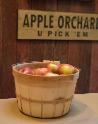 Apple Barn features pre-picked or pick-your-own apples.