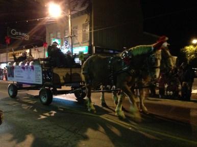 horses in the Madoc Santa parade