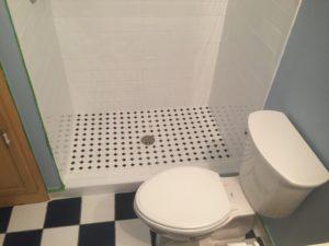 Chanhassen, MN Bathroom Remodel