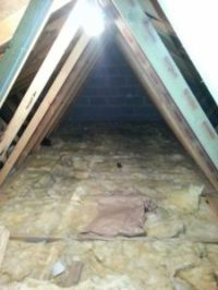 Gallery | Attic Stairs Solutions - Cork