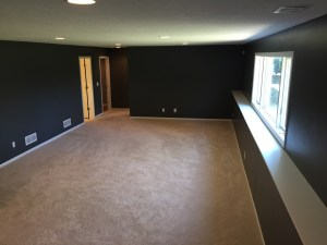 Brooklyn Park, MN Basement Remodel
