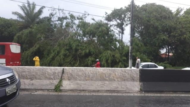 Chuvas causam transtorno