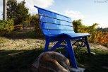 Panchina Blu, Clavesana