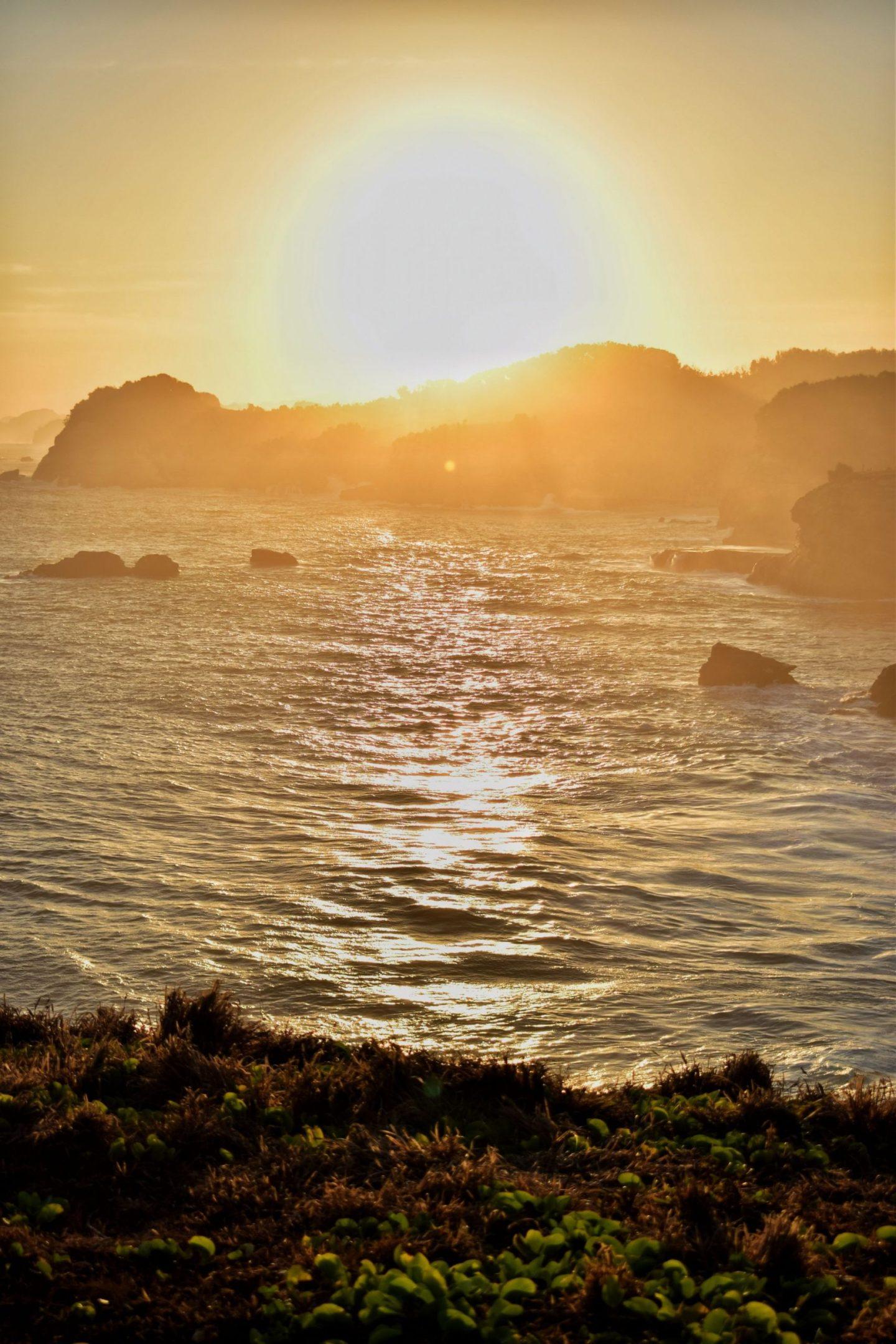 Benefits of Vitamin D/Getting Sunlight
