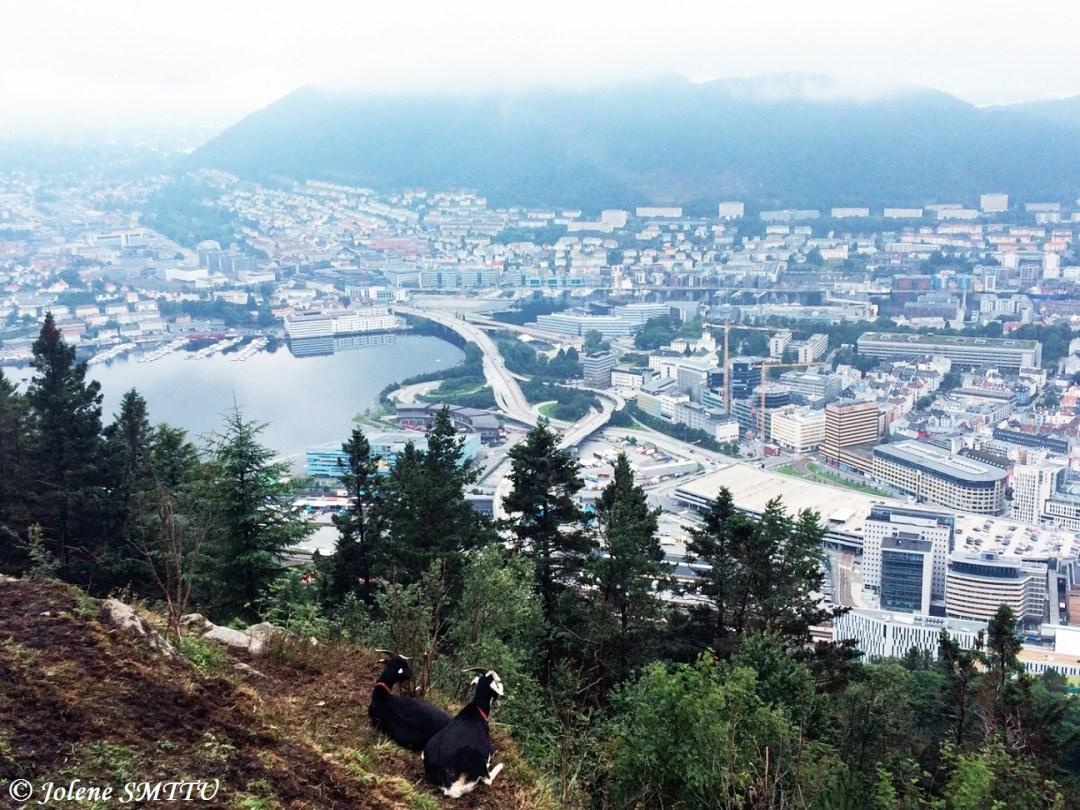Norway 11.JPG