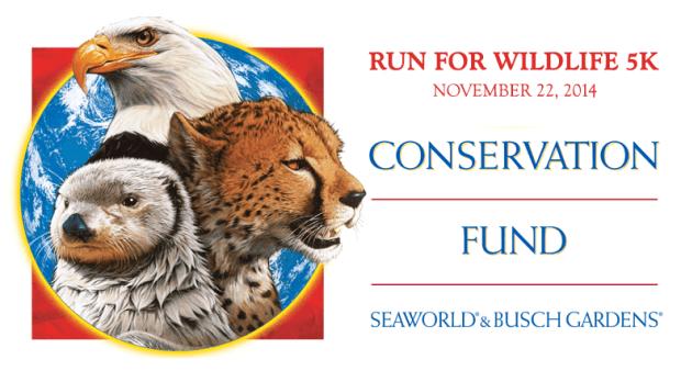 busch gardens run for wildlife 5k