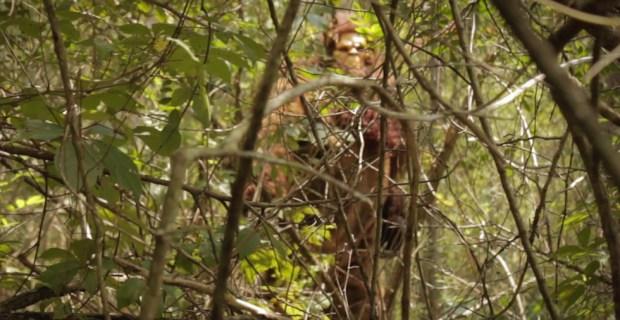skunk ape at gatorland