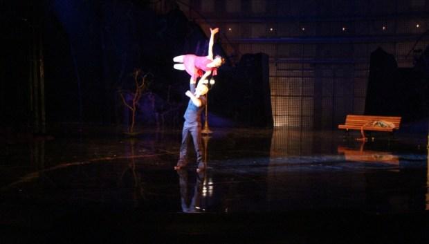 a choreographers' showcase orlando ballet cirque du soleil la nouba