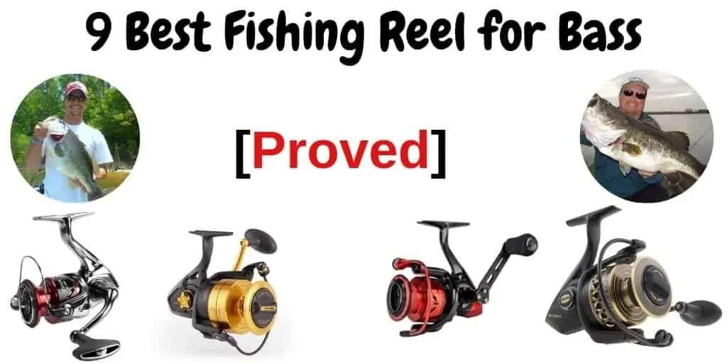 Best Fishing Reel for Bass