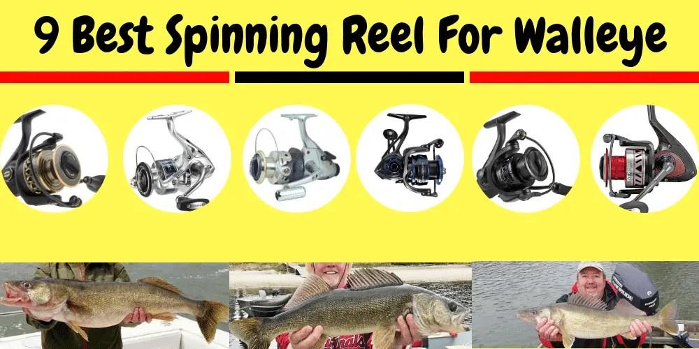 Best Spinning Reel For Walleye