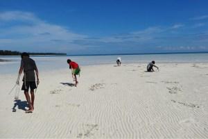 Bagsuk Island, Palawan