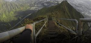 Høj trappe ned af bevokset bjerg