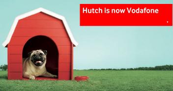 Hutch pug