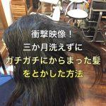 衝撃映像!三か月洗えずにガチガチにからまった髪をとかした方法